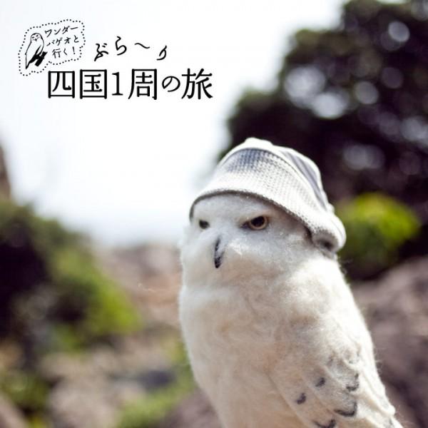 バゲオ_四国旅_02