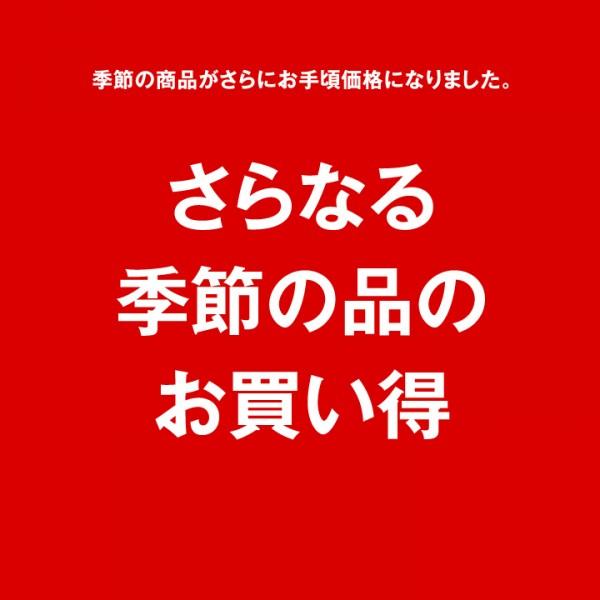 ストラクト セール お買い得 sale struct 大阪 セレクト ショップ