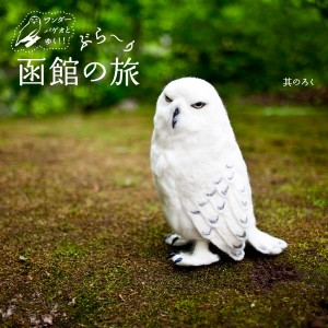 ワンダーバゲオとゆく!ぶら〜り函館の旅・其のろく(大沼公園編)
