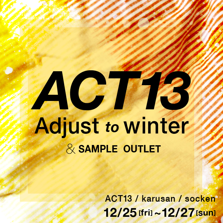 act13_03