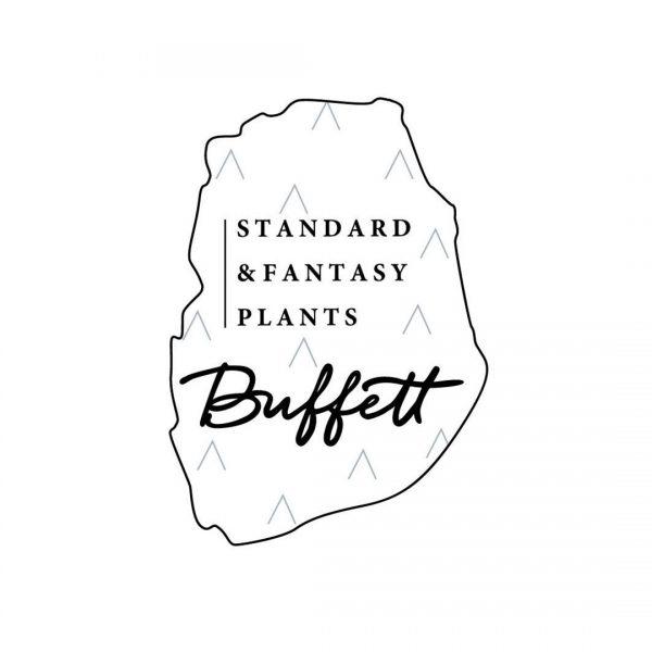 BOTTLE by Buffett ボトル・バイ・バフェット  (ドライフラワー アロマディフューザー)