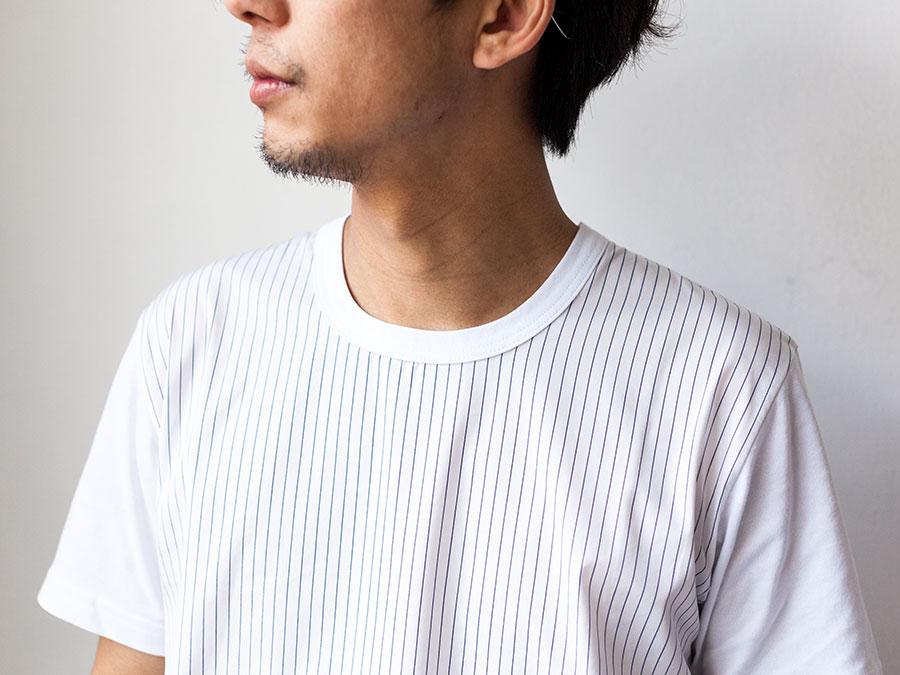 ALOYE アロイ 2017ss シャツ 切り返し グラフィック Tシャツ ストライプ襟元