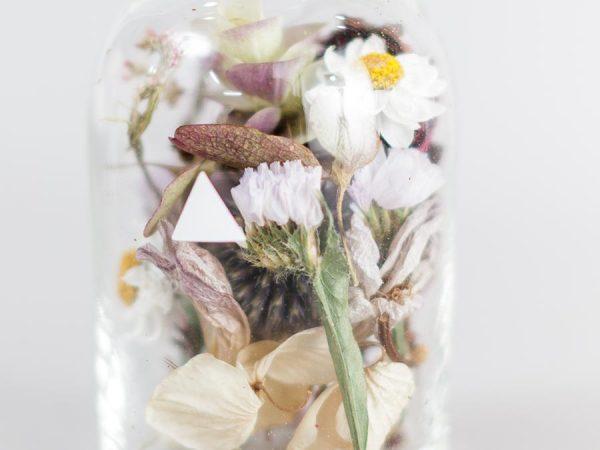bottle by botanist buffett バフェット 母の日 拡大図